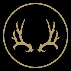 Guided Mule Deer Hunting in Northeast Montana